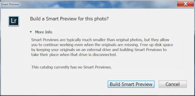 smart_preview2