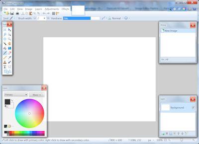 paint_net1